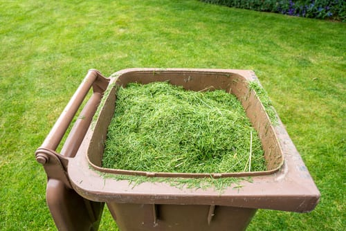 grass cutting chelmsford - we dispose of grass cuttings